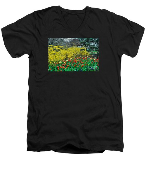 Men's V-Neck T-Shirt featuring the photograph Yellow Forsythia by Diana Mary Sharpton