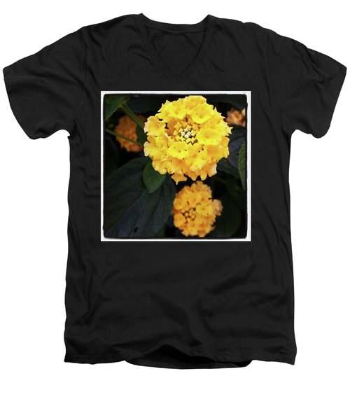 Men's V-Neck T-Shirt featuring the photograph Yellow Lantanas Along The Scenic Drive by Mr Photojimsf