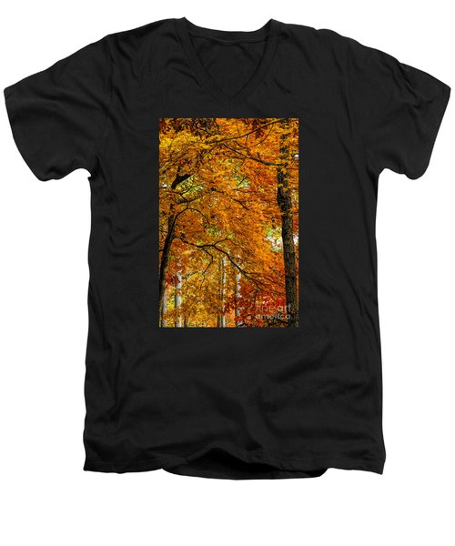Yellow Leaves Men's V-Neck T-Shirt by Barbara Bowen