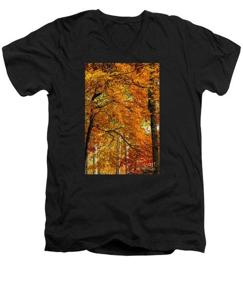 Yellow Leaves Men's V-Neck T-Shirt