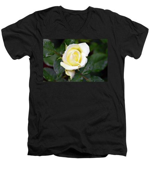Yellow Rose 1 Men's V-Neck T-Shirt