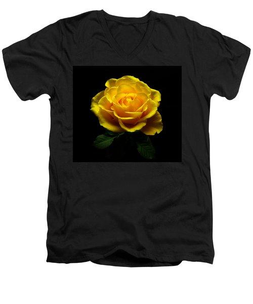 Yellow Rose 4 Men's V-Neck T-Shirt