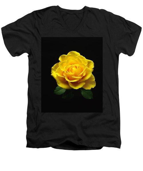 Yellow Rose 6 Men's V-Neck T-Shirt