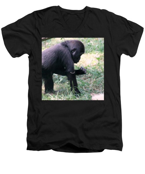 Men's V-Neck T-Shirt featuring the photograph Young Gorilla by Laurel Talabere
