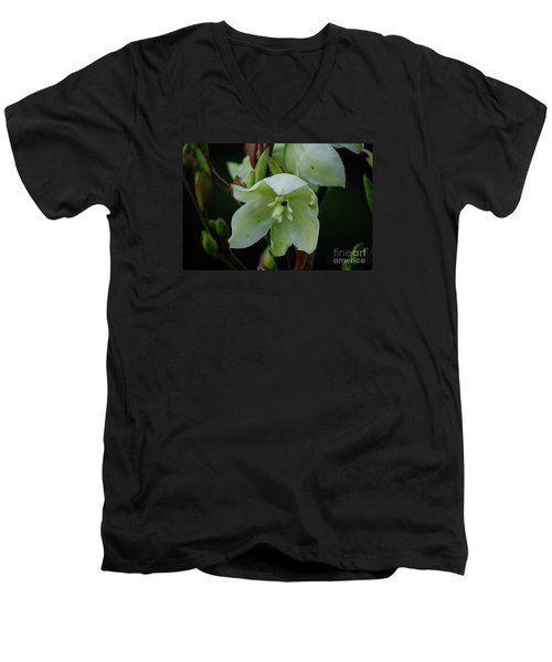 Yucca Men's V-Neck T-Shirt by Randy Bodkins