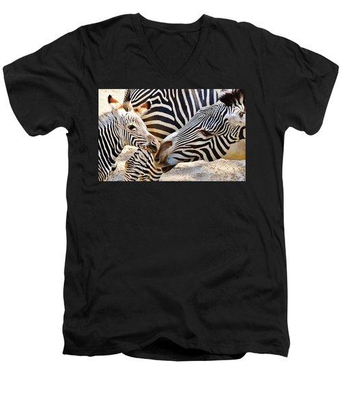 Zebra Mother And Calf Men's V-Neck T-Shirt