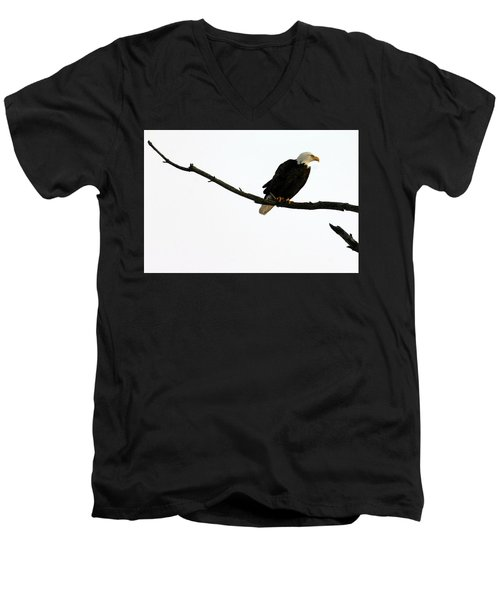Bald Eagle 120501 Men's V-Neck T-Shirt