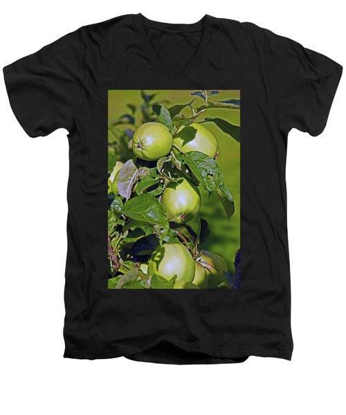 21/07/14  Chorley.  Astley Hall. Men's V-Neck T-Shirt
