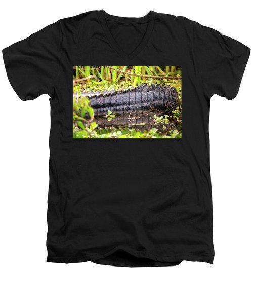 A Dinosaur Tale Men's V-Neck T-Shirt