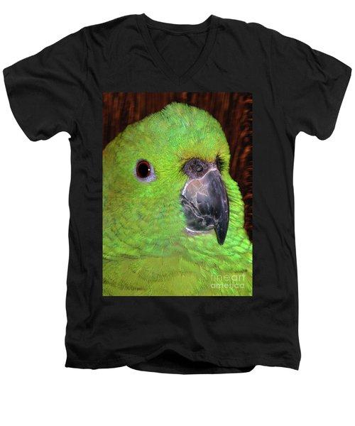 Amazon Parrot Men's V-Neck T-Shirt