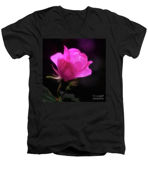 Anniversary Rose Men's V-Neck T-Shirt