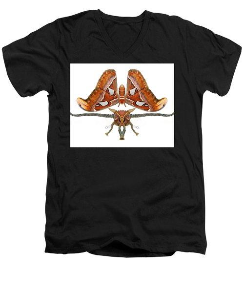 Atlas Moth5 Men's V-Neck T-Shirt