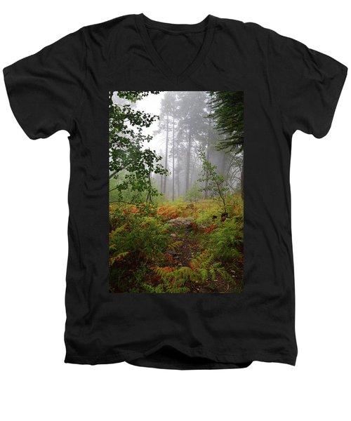 Autumn Fog  Men's V-Neck T-Shirt