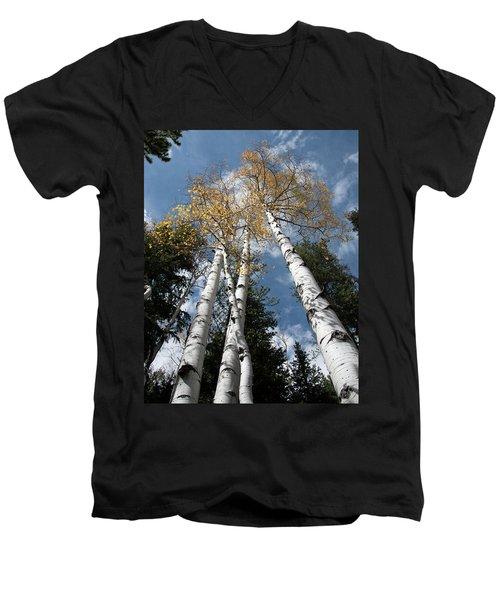 Autumnal Aspen Men's V-Neck T-Shirt