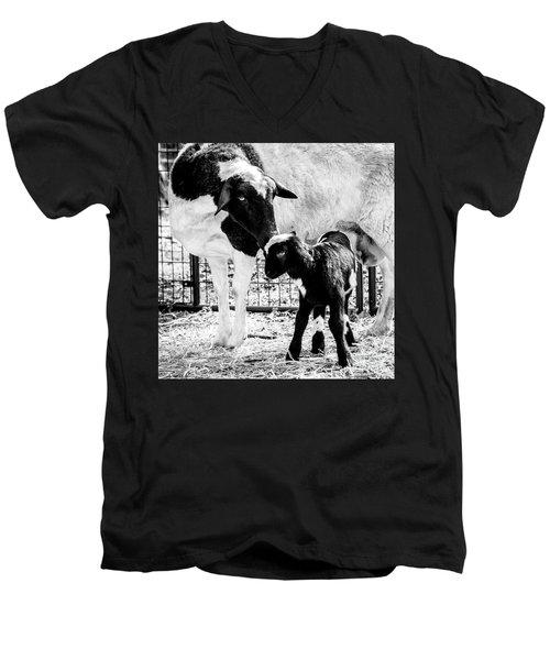Baba And Pepe Sheep Men's V-Neck T-Shirt