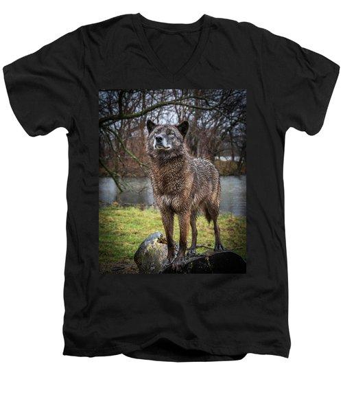 Best Of Show Pose Men's V-Neck T-Shirt