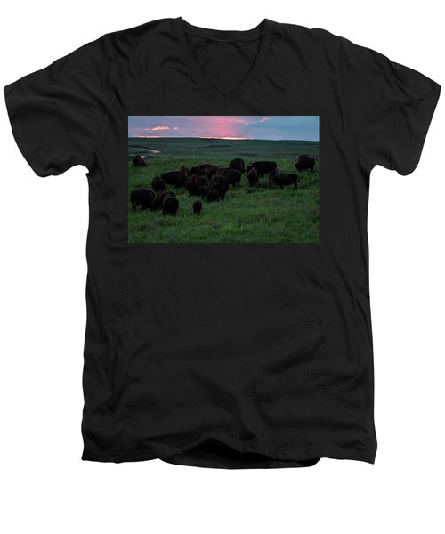 Bison At Sunset Men's V-Neck T-Shirt