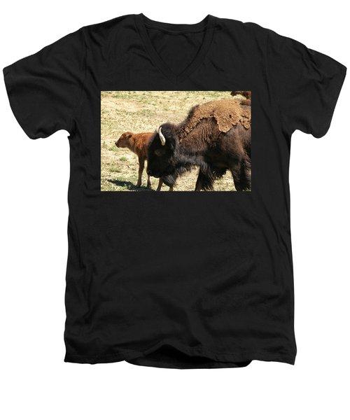 Bison In North Dakota Men's V-Neck T-Shirt