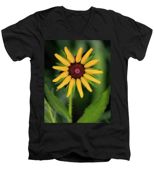 Black Eyed Susan Men's V-Neck T-Shirt