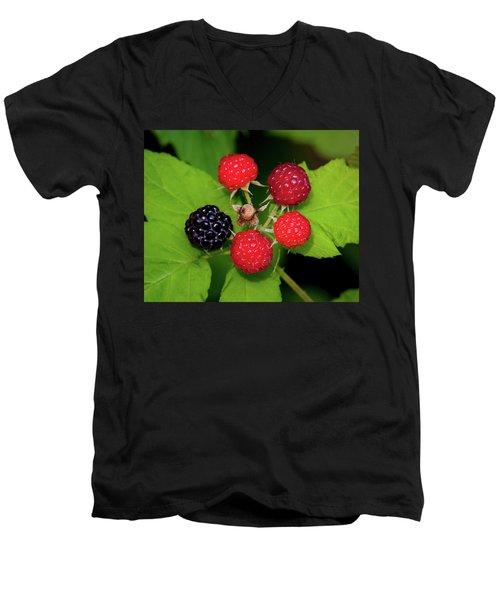Blackberries Men's V-Neck T-Shirt