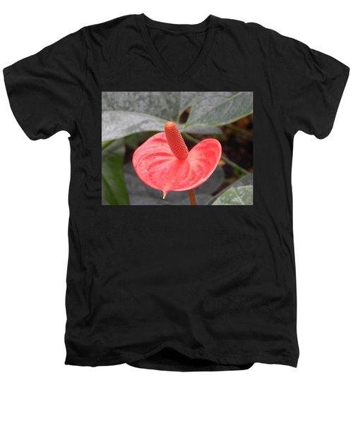 Botanical Garden Plants And Flowers Men's V-Neck T-Shirt