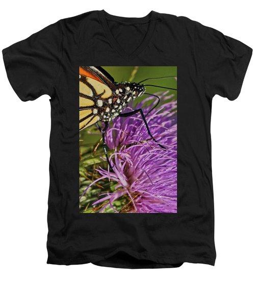 Butterfly Closeup Vertical Men's V-Neck T-Shirt