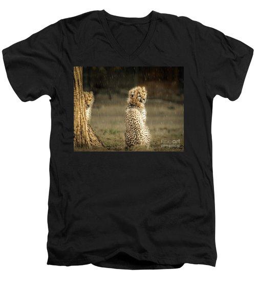 Cheetah Cubs And Rain 0168 Men's V-Neck T-Shirt
