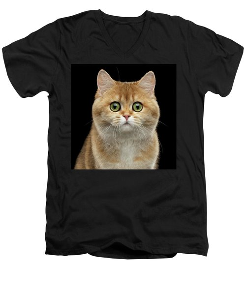 Close-up Portrait Of Golden British Cat With Green Eyes Men's V-Neck T-Shirt