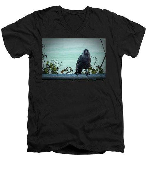 Cornish Crow Men's V-Neck T-Shirt