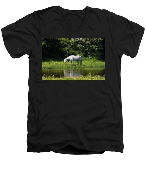 Cumbria. Ulverston. Horse By The Canal Men's V-Neck T-Shirt