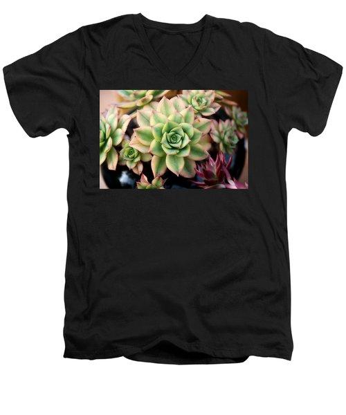 Cute Succulent Men's V-Neck T-Shirt