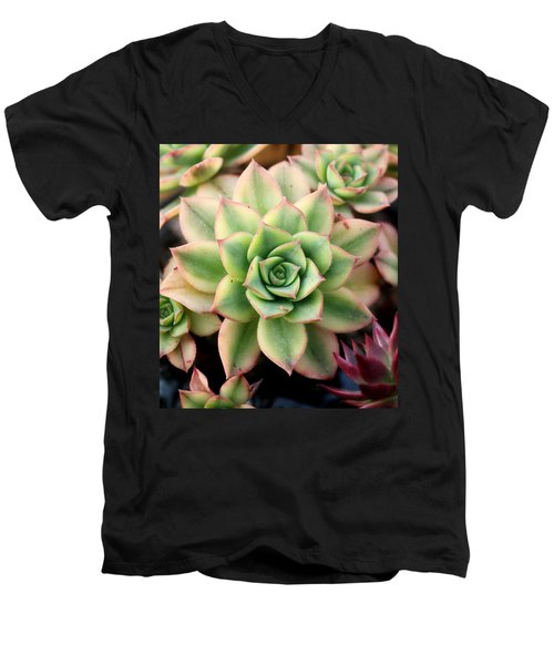 Cute Succulent Men's V-Neck T-Shirt