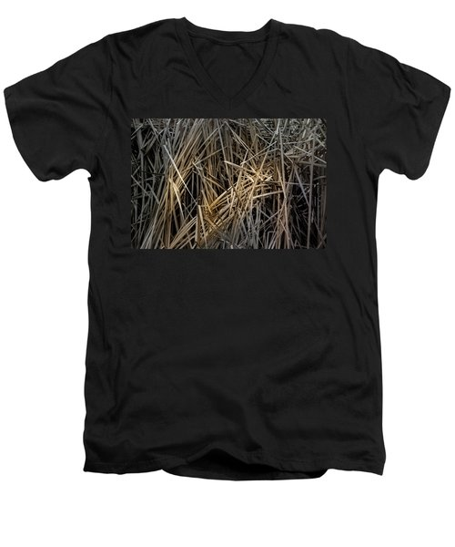 Dried Wild Grass IIi Men's V-Neck T-Shirt