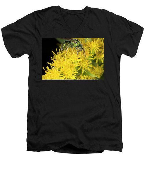 Men's V-Neck T-Shirt featuring the photograph Emerald Wasp On Goldenrod 8271701 by Rick Veldman