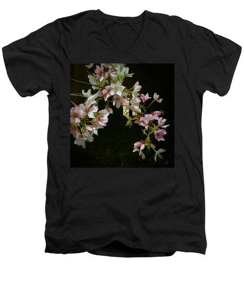 Ephemera Men's V-Neck T-Shirt