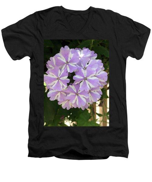 Fancy Phlox Men's V-Neck T-Shirt
