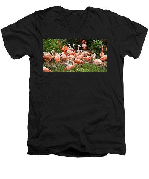 Flamingos Outdoors Men's V-Neck T-Shirt