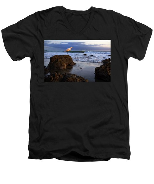 Giant Egret Men's V-Neck T-Shirt