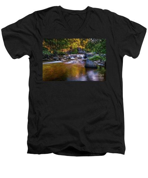 Golden Calm Men's V-Neck T-Shirt