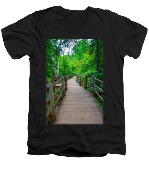 Gooseberry River Trail Men's V-Neck T-Shirt