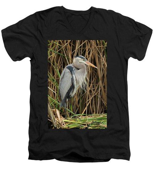 Great Blue Heron On Padre Island Men's V-Neck T-Shirt