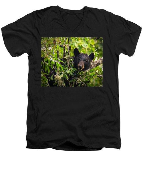 Great Smoky Mountains Bear - Black Bear Men's V-Neck T-Shirt