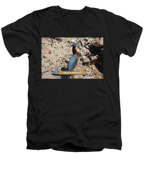 Green Heron Strut - Virgin Nature Series Men's V-Neck T-Shirt