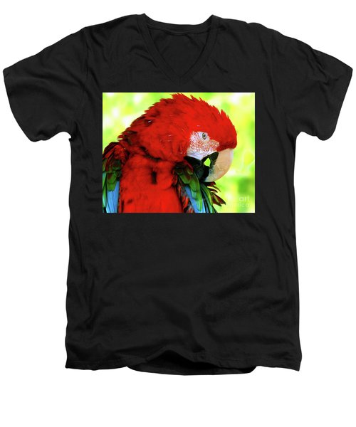 Green-winged Macaw Men's V-Neck T-Shirt