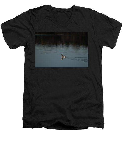 Herring Gull Men's V-Neck T-Shirt