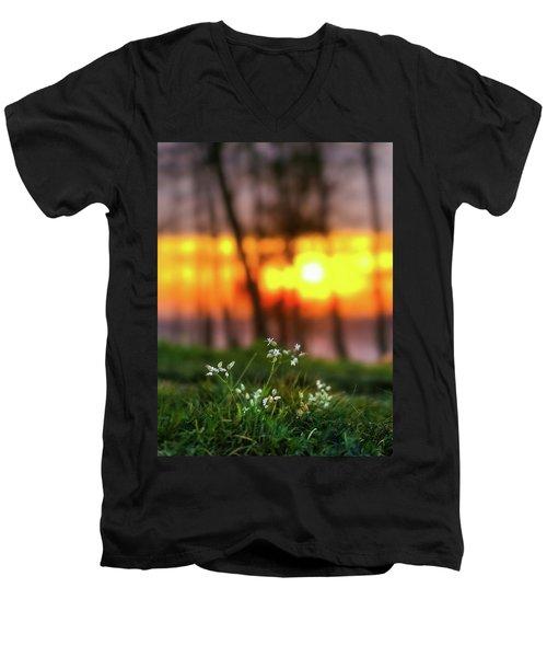 Into Dreams Men's V-Neck T-Shirt