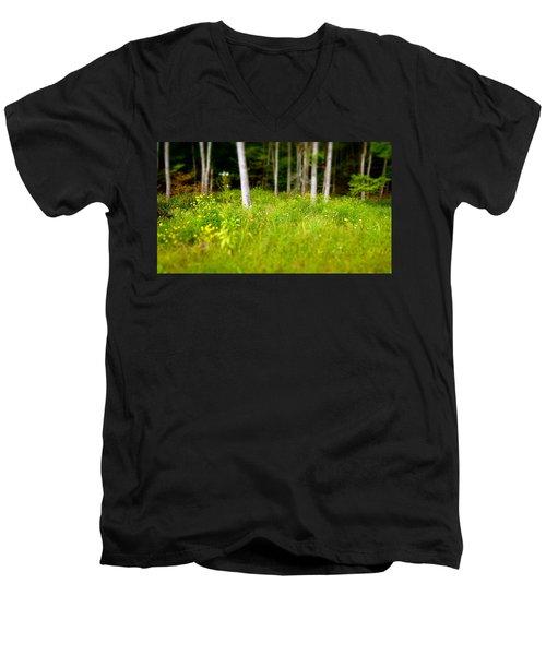 Into The Wild Men's V-Neck T-Shirt
