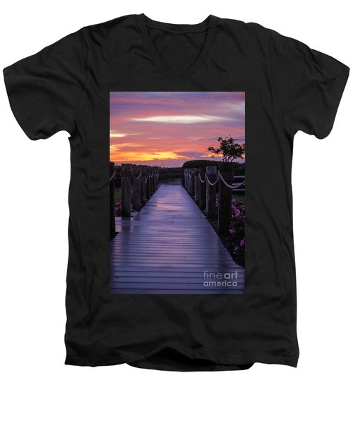 Just Another Day In Paradise Men's V-Neck T-Shirt