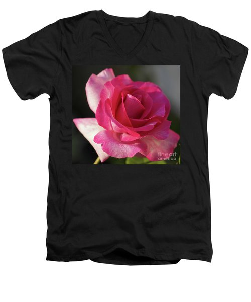 Late October Rose Men's V-Neck T-Shirt