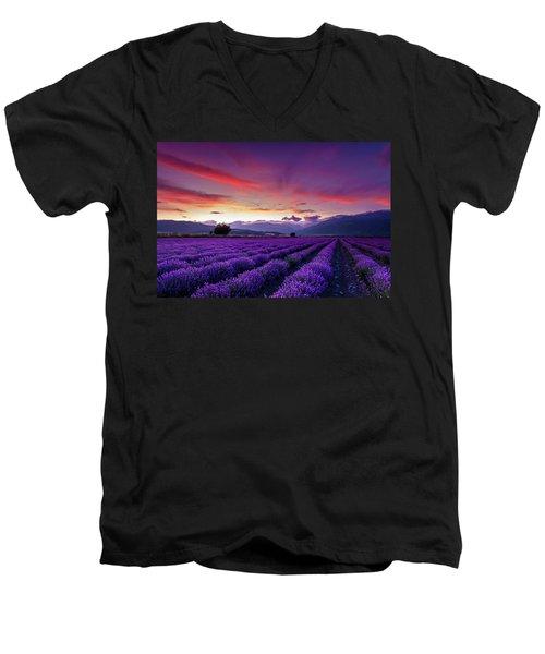 Lavender Season Men's V-Neck T-Shirt